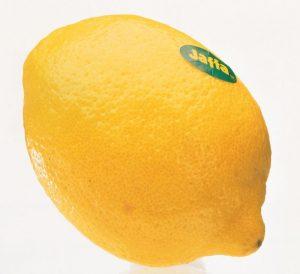 Eureka_KSC_Lemon